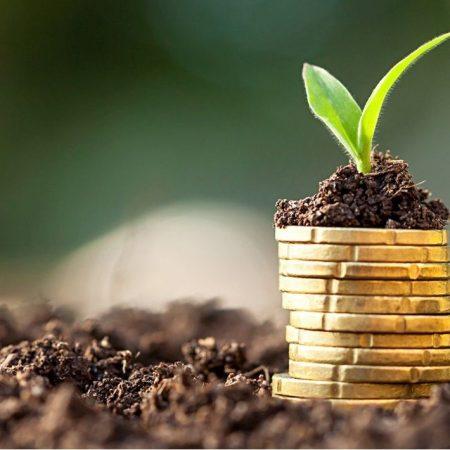 کارآموزی در حوزه  امور مالی