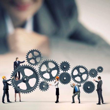 دیپلم حرفه ای در حوزه مدیریت کسب و کار